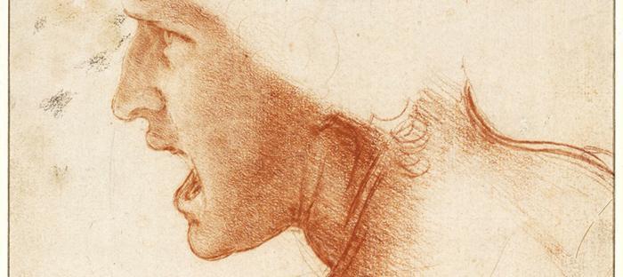 Beeld: Leonardo Da Vinci, Studie van hoofd van een soldaat voor de Slag bij Anghiari (detail). Collectie Szépművészeti Múzeum (Museum voor Schone Kunsten), Boedapest.